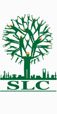 Sustainability Leaders Group (SLC)